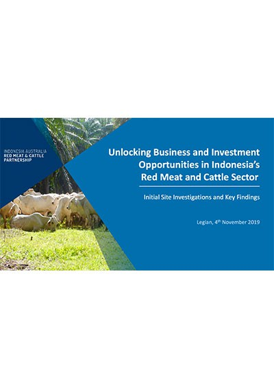 Unlocking Business and Investment Opportunities in Indonesia's Red Meat and Cattle Sector