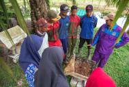 P4S Karya Baru Mandiri trainer providing training to university students and smallholder farmers on the cut-and-carry cattle breeding model