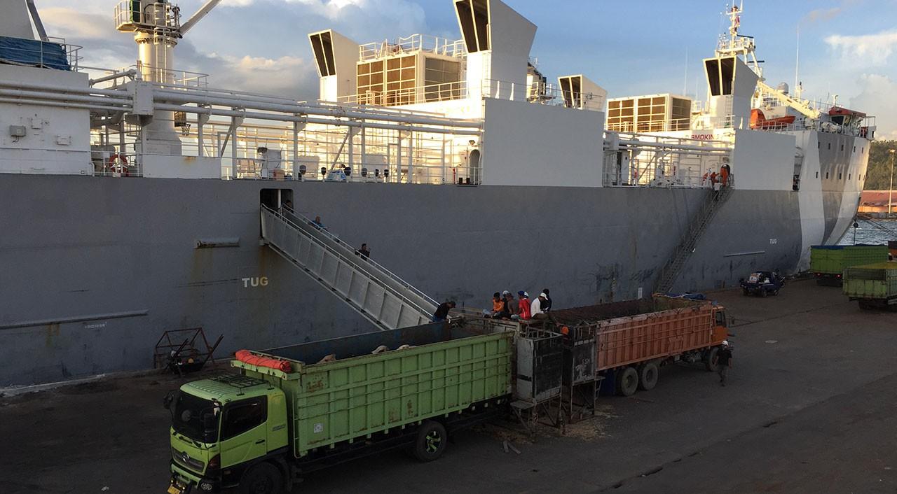 Unloading of cattle at Panjang Port in Lampung